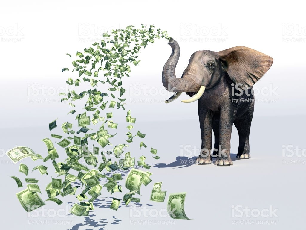 Elephant and dollar bills on white background. ,3D render.